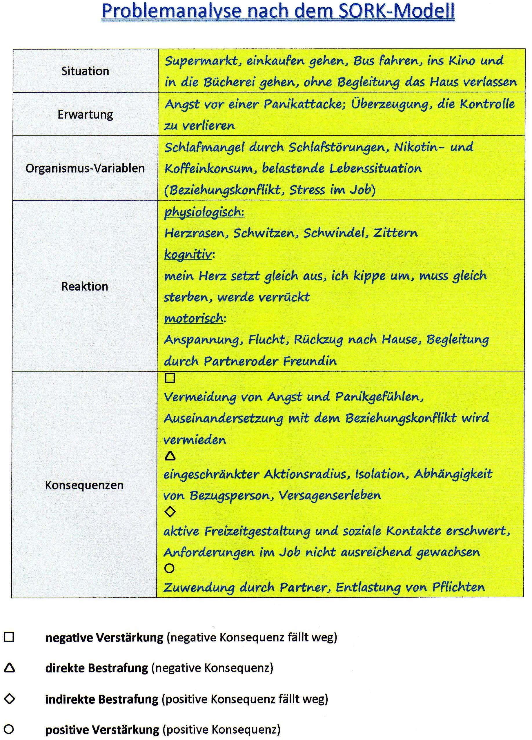 VT - Problemanalyse nach SORK-Modell